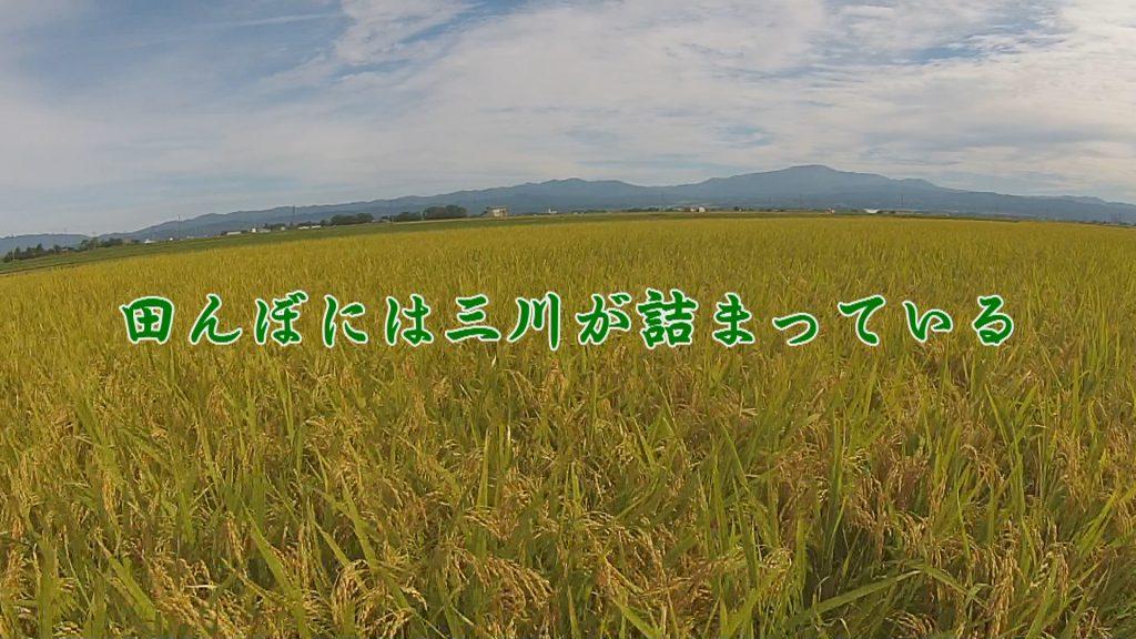 三川町の写真