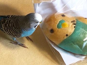 インコとパン